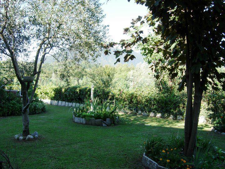 Il giardino interno comune della casa del lago